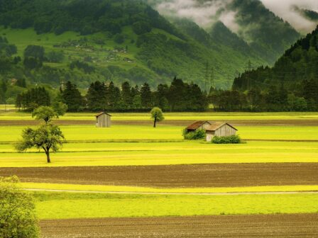 Future Farming Resilience Fund to open in August